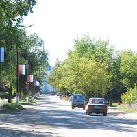 Центральная дорога, Ардатов