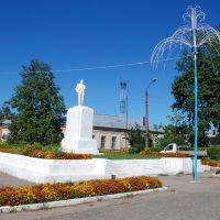 Центральная площадь, Ардатов