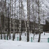 School, Ардатов