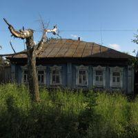 Дерево и дом, Арзамас