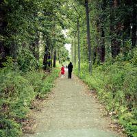 Дорога к проходной, Балахна