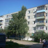 дом 44, ул. Дзержинского, г. Балахна, Балахна