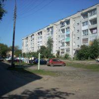 дом 4, ул. Лесопильная, г. Балахна, Балахна