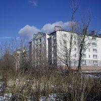 Центр ( за библиотекой), Богородск