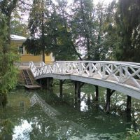 """Gorbaty"" (""Bent"") Bridge, Большое Болдино"