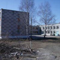 Школа № 20, Большое Козино
