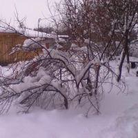 Двор дома №3 по улице Школьная, Большое Мурашкино