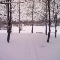 Лыжня в Парке Победы, Большое Мурашкино