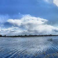 Заливные луга, Большое Пикино