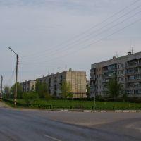 Ул Тургенева, Большое Пикино