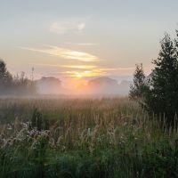Утро!, Большое Пикино
