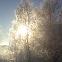 Солнце сквозь лес и иней, Бутурлино