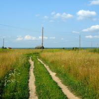 Просёлочная дорога, Варнавино