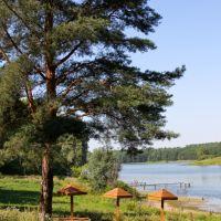 summer, Вача