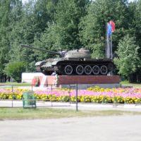 Памятник, Ветлуга