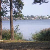 Вильский пруд, Виля