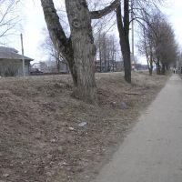 Voskresenskoe March 2006, Воскресенское