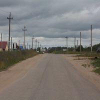 Rural roads 2009, Воскресенское