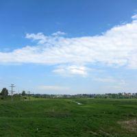 Grasslands, Выездное