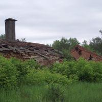 Руины старого чугунолитейного завода, Выкса