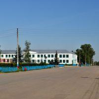 Здание школы, Гагино