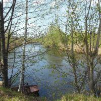 тёплая речка весной, Гидроторф