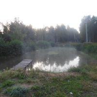 пруд с трамплином, Гидроторф