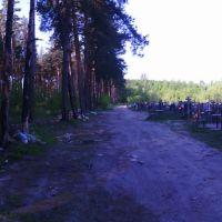 грунтовая дорога (16.05.2014), Горбатовка