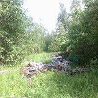 свалка (08.06.2012), Горбатовка
