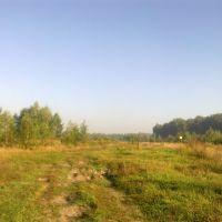 поле (17.08.2013), Горбатовка