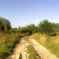 грунтовая дорога (17.08.2013), Горбатовка