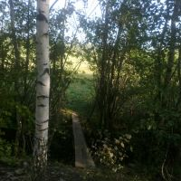 самодельный мостик (17.08.2013), Горбатовка