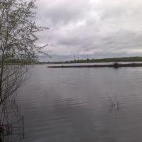 Герасима не будет... плыви сама, собака!  (17 мая 2009), Дзержинск