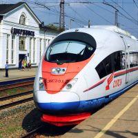 Сапсан прибывает к высокой платформе, Дзержинск
