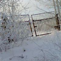 дорога на заброшенный завод, Заволжье