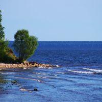 Coast of Gorky reservoir (Берег Горьковского водохранилища), Катунки