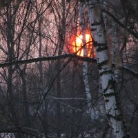 Декабрьское солнце, Кулебаки