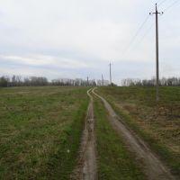 Дорога к очистным, Кулебаки