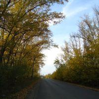 Мурзичная дорога 2, Кулебаки
