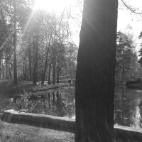 Парк, Кулебаки