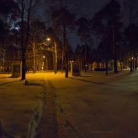 Зимняя ночь в городском парке, Кулебаки