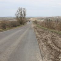 road out of Lukoyanov, Лукоянов