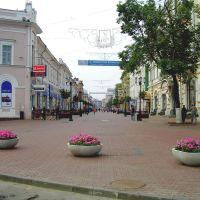 Пешеходная зона, Нижний Новгород