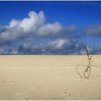 Пляж, Павлово