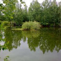 пруд рядом с Первомайском, Первомайск