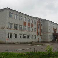Сеченовская школа (Sechenovos school), Сеченово