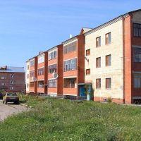 Высотные дома (High houses), Сеченово