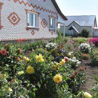 Сельский дом (Village house), Сеченово