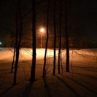 Зимний вечер, Сеченово