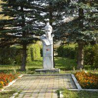 Памятник Шишмакову Илье Николаевичу, Тоншаево